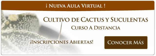PopUp Cursos Septiembre Cactus Hor