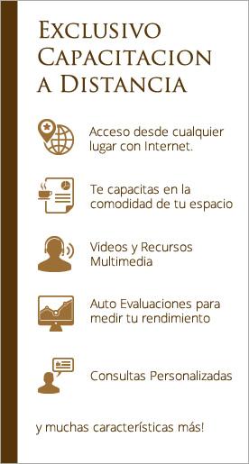 aula virtual caracteristicas