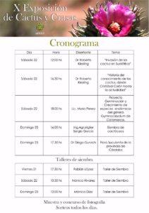 cronograma-charlas